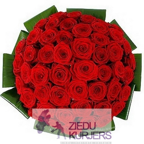 51 red roses with greens